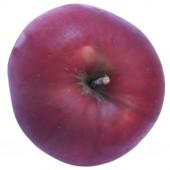 Jonathan, Apfel Halbstamm, oben